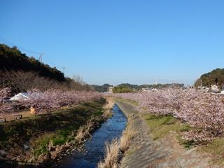 R_hanakawa02