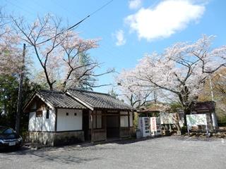 P_tobayama25