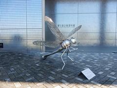 E_kakegawa03