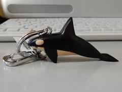 Orca10