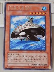 Orca40